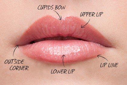 Volle lippen
